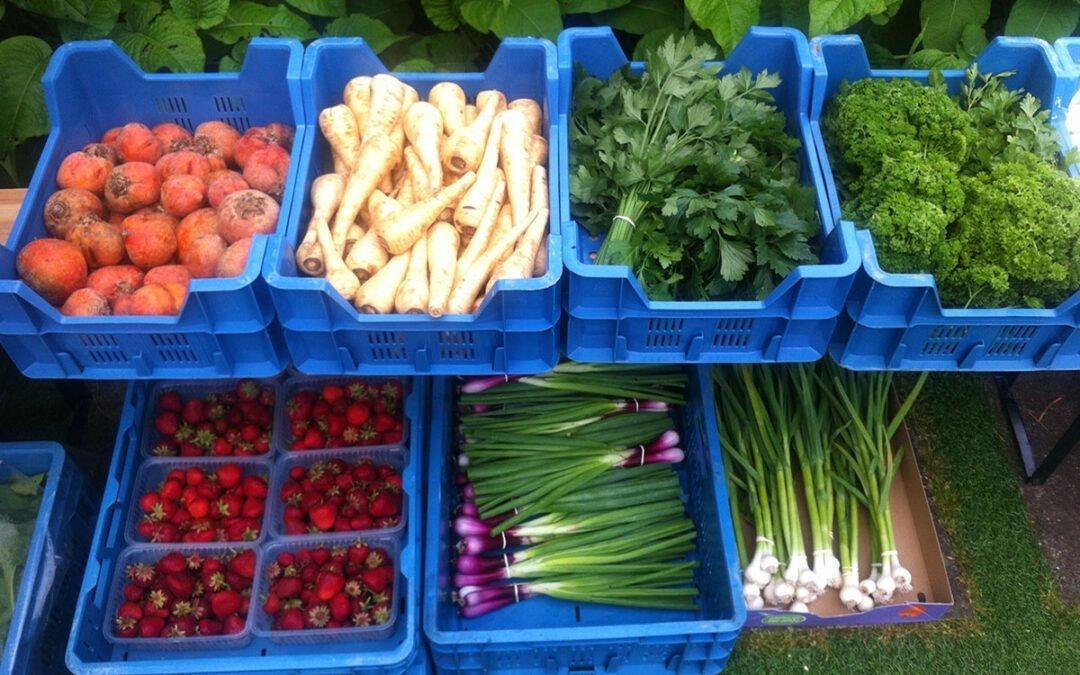 Hoe zit het met ons voedsel – deel 7: Voedsel coöperatie Osdorp